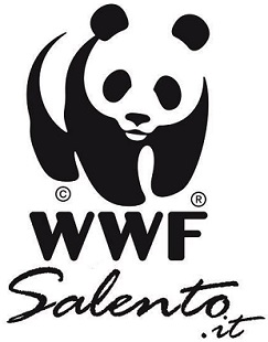 Gallery e Eventi-WWF Salento
